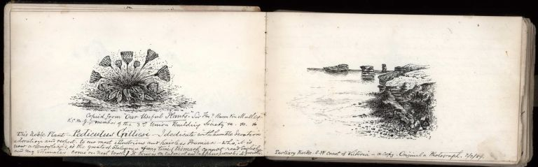 [Sketches And Notes From Australia, India And Great Britain]. Robert Brough Smyth, Australian.