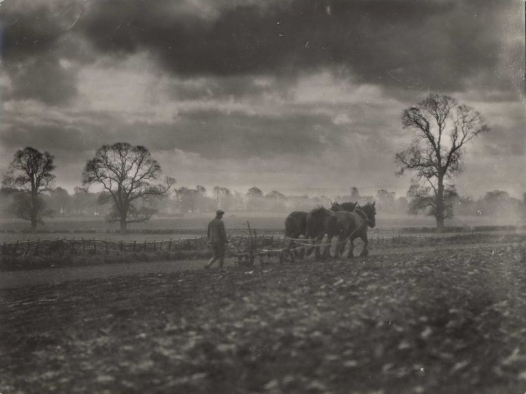 [Man And Horses Ploughing A Field]. E O. Hoppé, Brit.