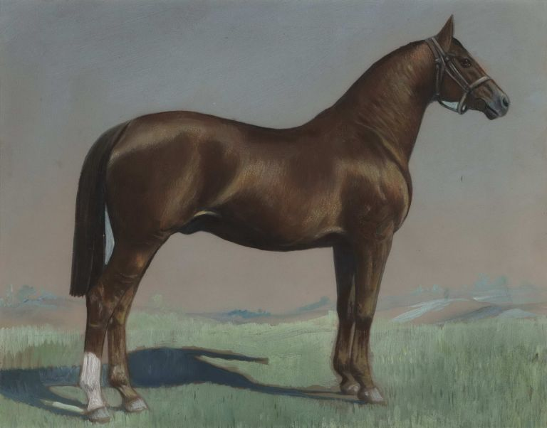 [Racehorse]. Attrib. Martin Stainforth, Brit./Aust.