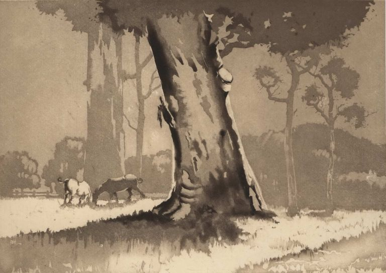 [Bush Scene With Horses]. David Barker, Aust.