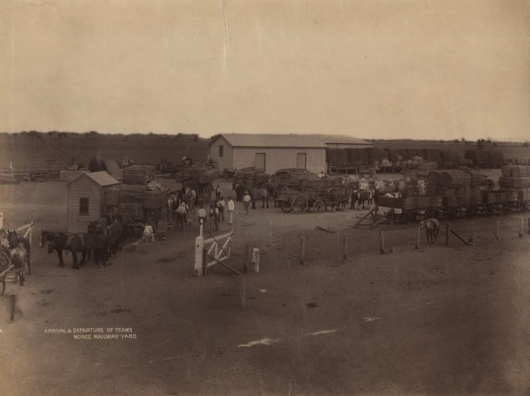 Arrival And Departure Of Teams, Moree Railway Yard [NSW]. Government Printer, est. 1842 Aust.