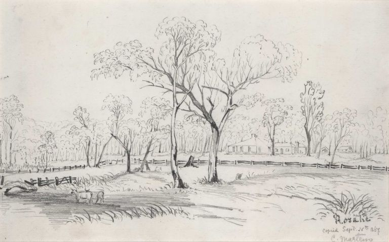 [Pastoral Scene].  After  Conrad Martens, Brit./Aust.