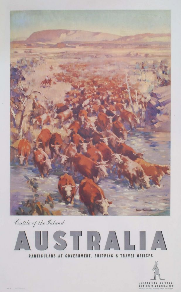 Cattle Of The Inland, Australia [Northern Territory]. James Northfield, Aust.