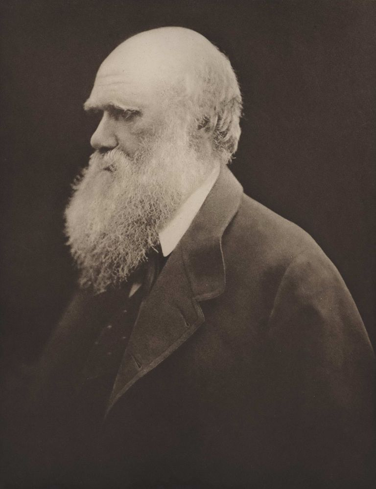 Charles Darwin. After Julia Margaret Cameron, Brit.