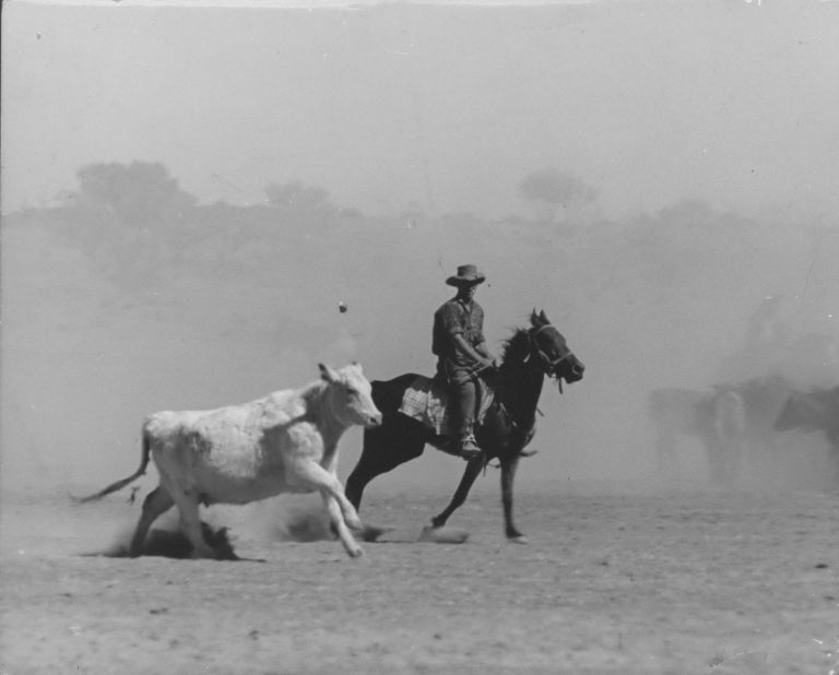 [Cattle And Sheep Droving, Australia]. Jeff Carter, Aust.