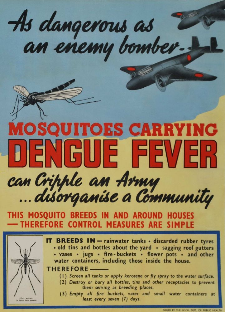 Mosquitos Carrying Dengue Fever. As Dangerous As An Enemy Bomber