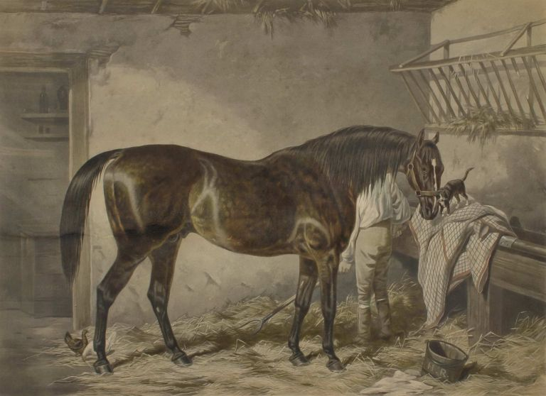 Melbourne [Race Horse]. After Harry Hall, c. Brit.