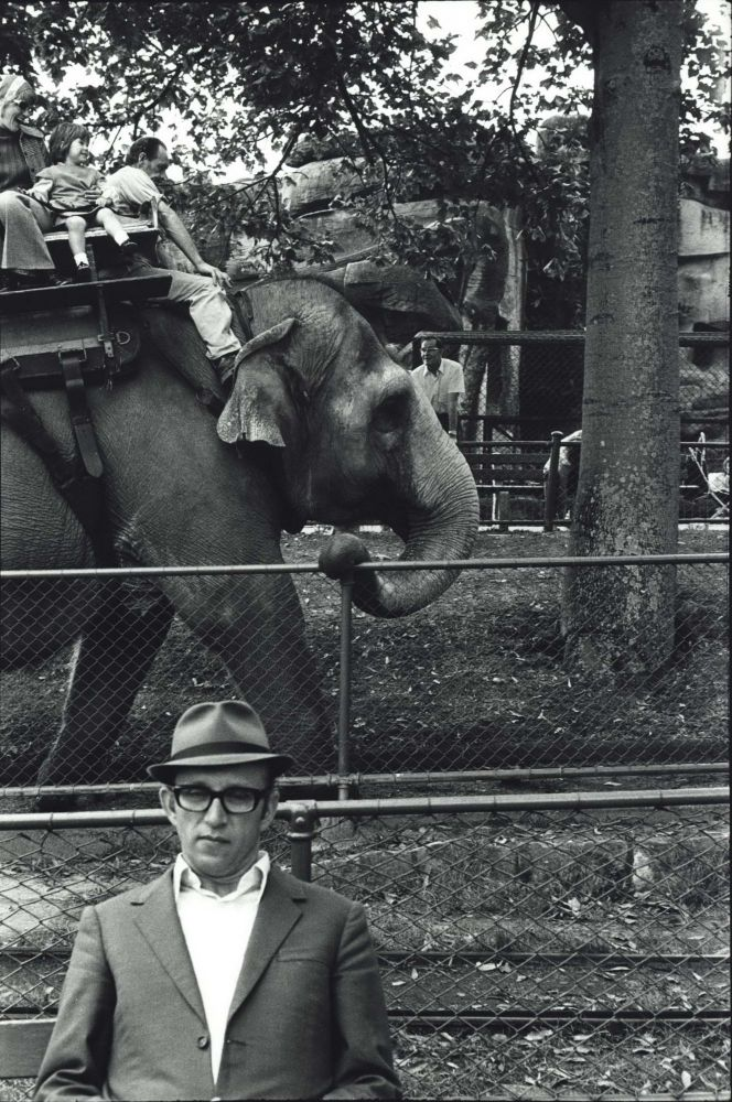 Taronga Zoo, Sydney [Elephant Ride]. Roger Scott, b.1944 Aust.