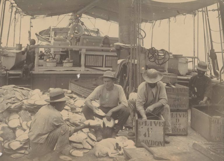 """[Pearl Luggers """"Olive"""" And """"Zanoni"""", Cape Melville, Queensland]"""