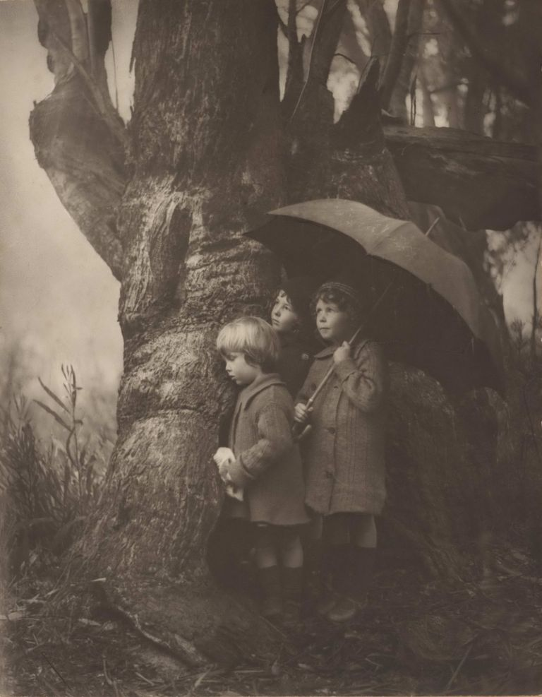 Shower Coming. Harold Cazneaux, 1878–1953 Aust.