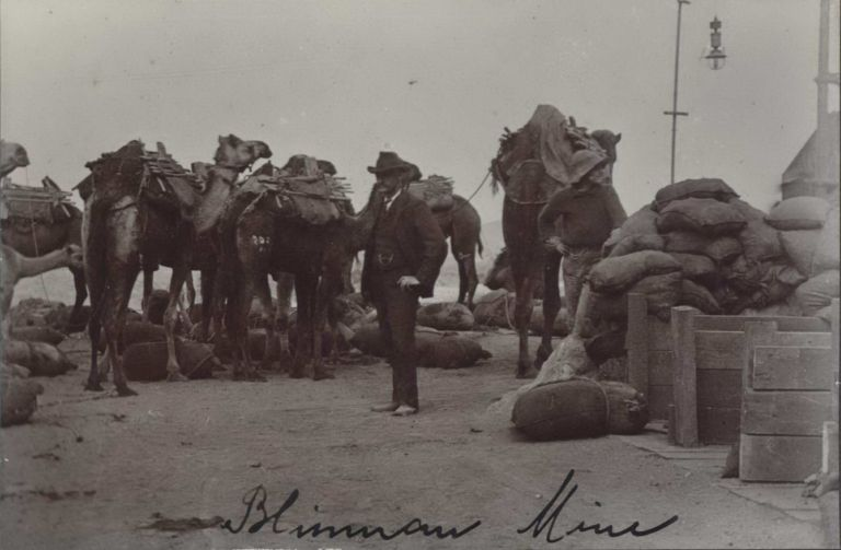 Blinman Mine, South Australia [Camel Train With Supplies]