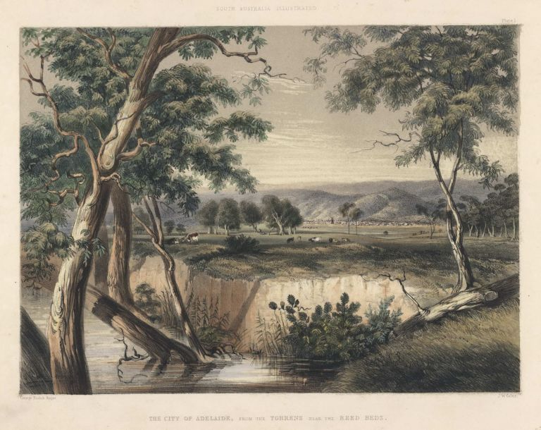 The City Of Adelaide, From The Torrens Near The Reed Beds [SA]. After George French Angas, 1822–1886 Brit./Aust.