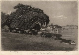 The Great Fig Tree, Berry's Bay, Sydney. Lionel Lindsay, Aust