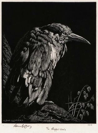 The Clipped Wing. Lionel Lindsay, Aust