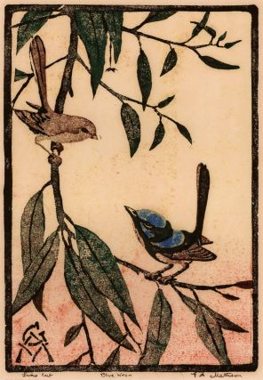 Blue Wrens. G A. Mattison, active 1930s Aust