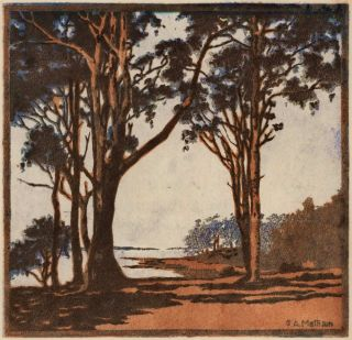 Trees Near The Coast]. G A. Mattison, active 1930s Australian