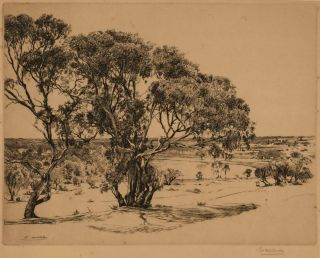 High Noon, South Australia. Edward Warner, Aust