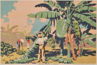 Cutting Bananas In Jamaica. Frank Newbould, Brit