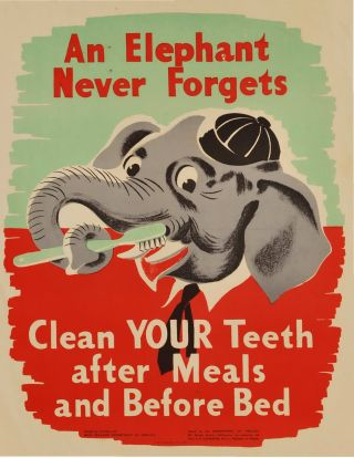 An Elephant Never Forgets: Clean Your Teeth After Meals And Before Bed