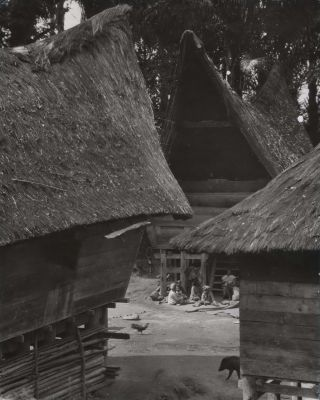 "The Typical ""Saddle-Back"" Dwellings In A Family Compound In Sumatra, Indonesia. E O...."