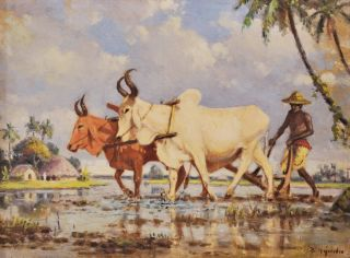 Man With Oxen Ploughing A Rice Paddy]. B. Majumdar, Indian