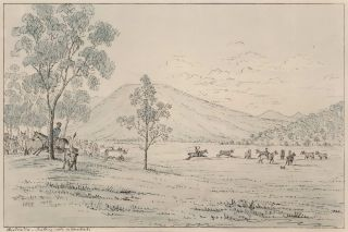 Australia [Cattle Droving, Queensland]