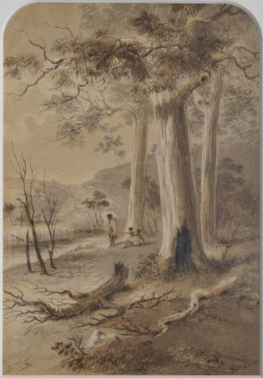 Collection Of Drawings Depicting An Australian Homestead And Landscapes