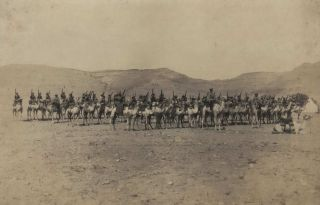 Australian Imperial Camel Corps, No. 2 Company, Sollum, Western Frontier, Egypt [WWI
