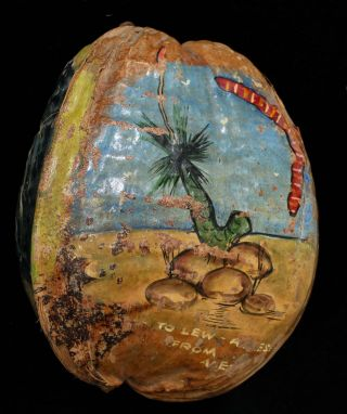 Queensland Coconut Souvenirs
