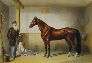 Rysdyk's Hambletonian.  After  James Henry Wright, American.
