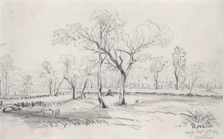 Pastoral Scene].  After  Conrad Martens, 1801- 1878 Brit./Aust