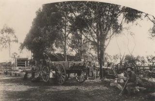 A Farm Yard, Lake Goldsmith Near Beaufort, Victoria, Australia