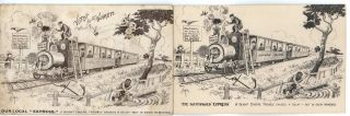 Collection Of Postcards Relating To Suffragettes And Women's Rights