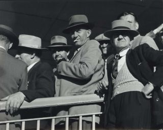 [Punters At Rosehill Races, Sydney]