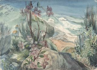 Coastal Scene With Flowers]. Muriel Medworth, Aust