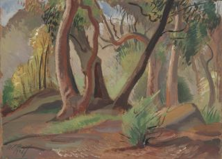Gum Trees]. Adelaide Perry, Aust