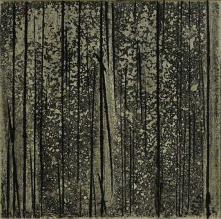 Sherbrooke Forest, Number 2 [Victoria]. Fred Williams, Australian