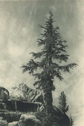 """Landscapes From The """"Sierra Club Bulletin"""""""