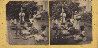 Tinnevelly Girls At A Missionary Boarding School [India