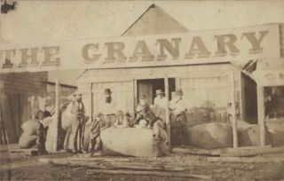 Thomas & Foster, Grocers, Drapers, Ironmongers & Co. and The Granary [Parkes, NSW]