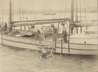 [Pearling Luggers] and [Divers, Thursday Island]
